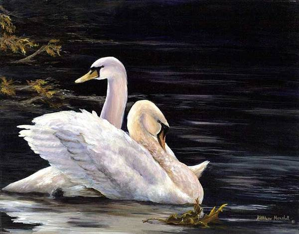 Swans Art Print featuring the print Swansong by Kathleen Marshall McConnell