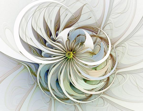 Digital Art Art Print featuring the digital art Swirling Petals by Amanda Moore