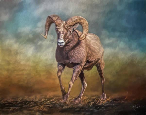 Sheep Art Print featuring the mixed media The Ram by Teresa Wilson