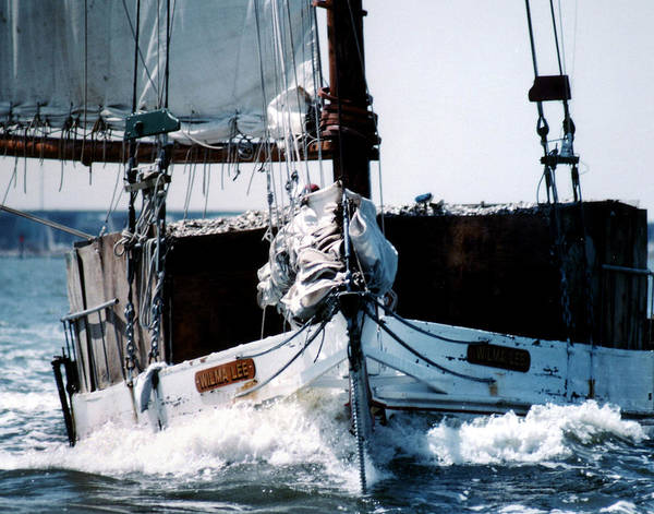 Boat Art Print featuring the photograph Wilma Lee by Skip Willits