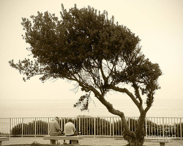 Beach Art Art Print featuring the photograph Morning Coffee Together by Artist and Photographer Laura Wrede