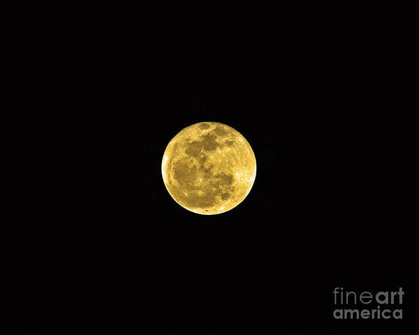 Moon Art Print featuring the photograph Passover Full Moon by Al Powell Photography USA