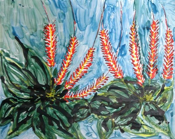 Flowers Art Print featuring the photograph Mann Flowers by Baljit Chadha