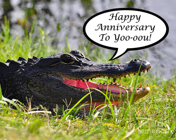 Anniversary Art Print featuring the photograph Alligator Anniversary Card by Al Powell Photography USA