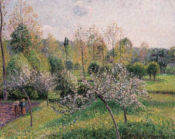 Apple Trees In Blossom Art Print featuring the painting Apple Trees In Blossom by Camille Pissarro