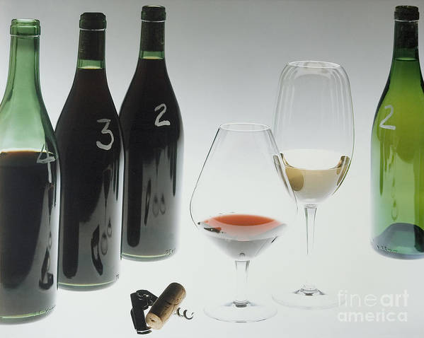 Wine Art Print featuring the photograph Blind Taste Test by Jerry McElroy