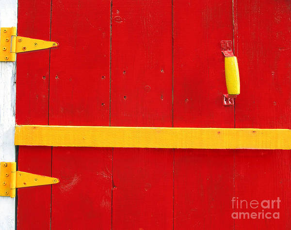Abstract Art Print featuring the photograph Bright Old Door by Liz Leyden
