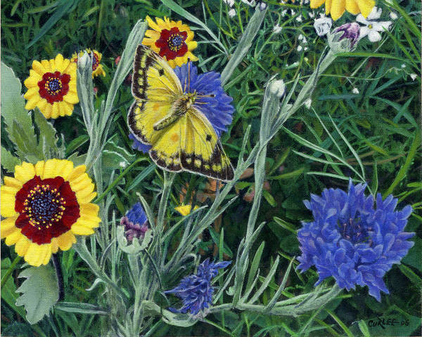 Garden Art Print featuring the painting Butterfly Wildflowers Spring Time Garden Floral Oil Painting Green Yellow by Walt Curlee