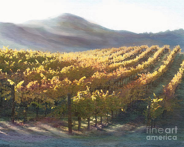 Corde Valle San Martin Ca Print featuring the painting California Vineyard Series Vineyard In The Mist by Artist and Photographer Laura Wrede