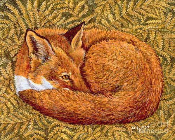 Fox Art Print featuring the painting Cat Napping by Ditz