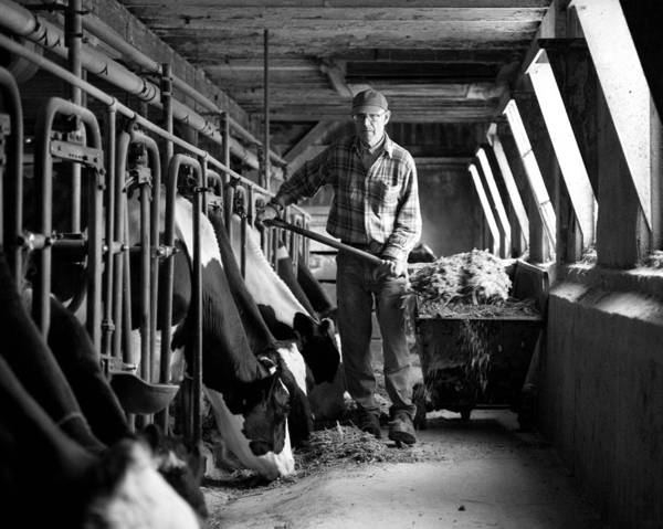 Farm Art Print featuring the photograph Chores 9 by Mike Tanner