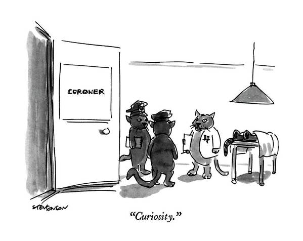 Cat Coroner Says To Cat Policemen Art Print featuring the drawing Curiosity by James Stevenson