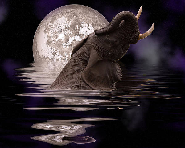 Elephant In The Water Turning Head Up With Tusks In The Air And A Moon Behind Art Print featuring the digital art Elephant At Play by Nichon Thorstrom