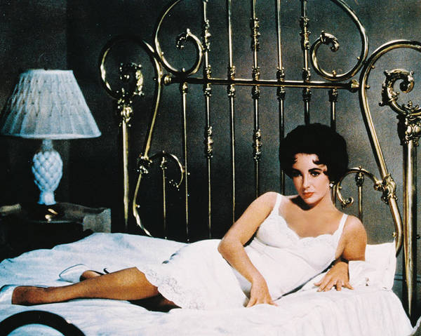 Cat On A Hot Tin Roof Art Print featuring the photograph Elizabeth Taylor In Cat On A Hot Tin Roof by Silver Screen