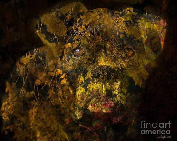 Boxer Dog Art Print featuring the digital art Fall Boxer by Judy Wood