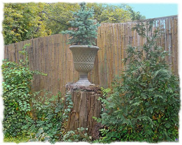 Bamboo Fence Art Print featuring the photograph Garden Decor 2 by Muriel Levison Goodwin