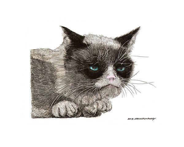 Grumpy Cat Art Art Print featuring the drawing Grumpy Pussy Cat by Jack Pumphrey