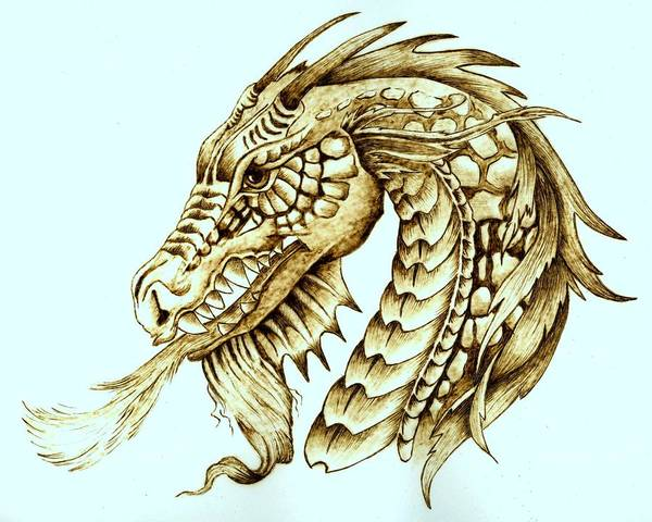 Dragon Art Print featuring the pyrography Horned Dragon by Danette Smith
