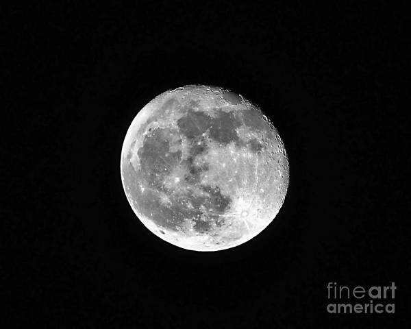 Moon Print featuring the photograph Hunters Moon by Al Powell Photography USA