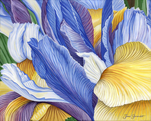 Iris Art Print featuring the painting Iris by Jane Girardot