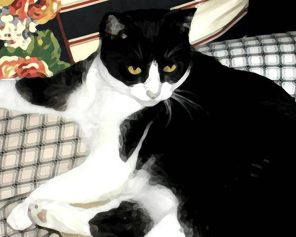 Black And White Art Print featuring the photograph Kitty On His Perch by Jeanne A Martin