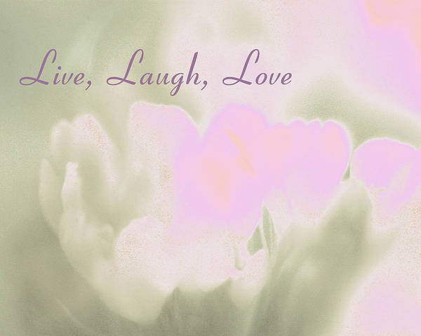 Live Art Print featuring the photograph Live Laugh Love by Penny Hunt