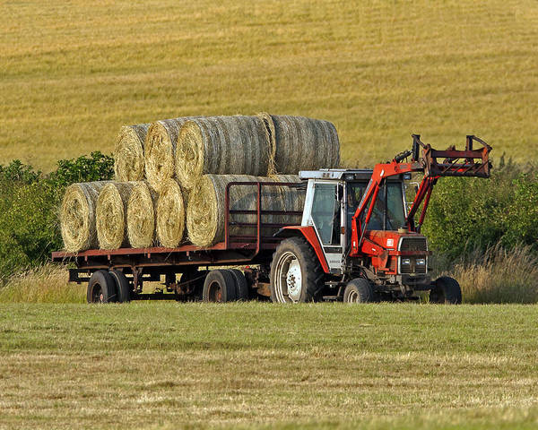 Hay Print featuring the photograph Make Hay When Sun Shines by Paul Scoullar