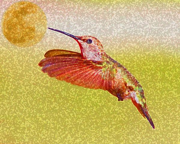Moon Bird Hummingbird Hummer Nature Texas Art Print featuring the photograph Moon Over Hummingbird by April Nowling