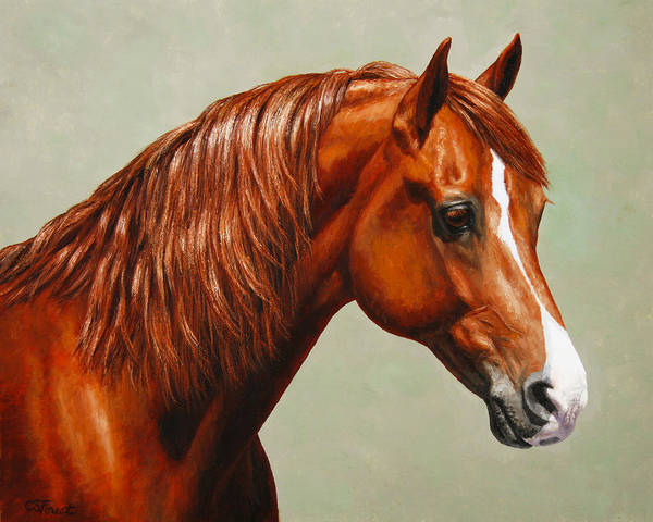 Horse Art Print featuring the painting Morgan Horse - Flame by Crista Forest