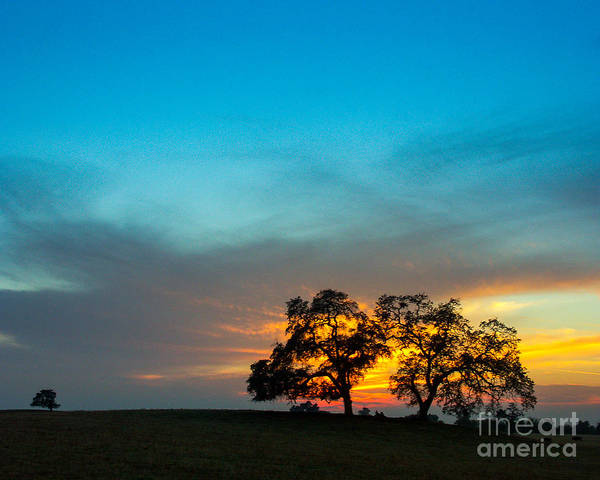 This Was Taken One Evening In The Sierra Foothills Not Far From My Home In Clovis Art Print featuring the photograph Oaks And Sunset 2 by Terry Garvin