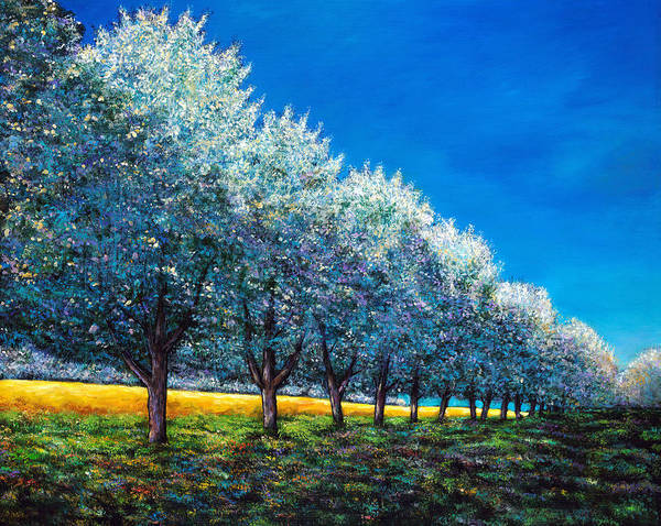 Cherry Orchard Art Print featuring the painting Orchard Row by Johnathan Harris