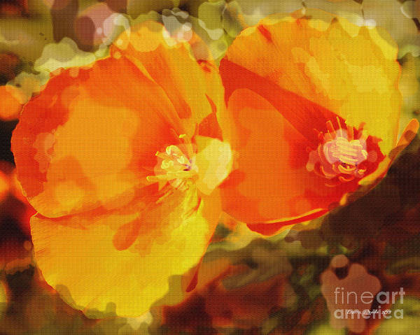 Abstract California Poppies Photographs Canvas Prints Canvas Art Print featuring the photograph Poppies On Fire by Artist and Photographer Laura Wrede