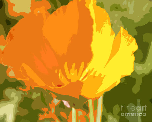 Bstract California Poppies Photographs Art Print featuring the photograph Retro Abstract Poppies 2 by Artist and Photographer Laura Wrede