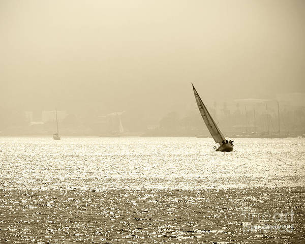 Sailing In San Diego Art Print featuring the photograph Sailing In San Diego Harbor by Artist and Photographer Laura Wrede