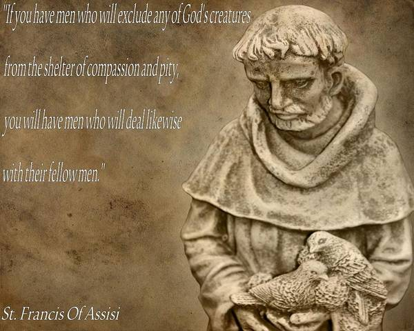 Saint Francis Of Assisi Print featuring the photograph Saint Francis Of Assisi by Dan Sproul
