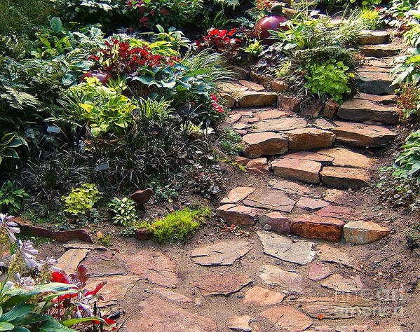 Patio Print featuring the photograph Sally's Garden by Nancy Harrison