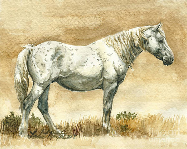 Wild Stallion Art Print featuring the painting Sterling Wild Stallion Of Sand Wash Basin by Linda L Martin
