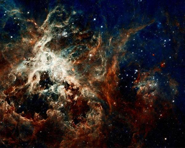 Hubble Art Print featuring the photograph Tarantula Nebula by Amanda Struz