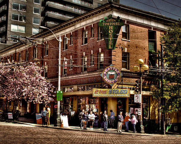 Green Tortoise Print featuring the photograph The Green Tortoise Hostel In Seattle by David Patterson