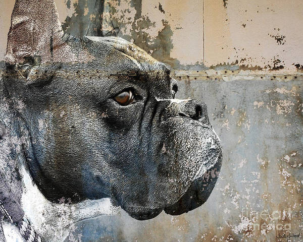 Dog Art Print featuring the digital art Watchful by Judy Wood