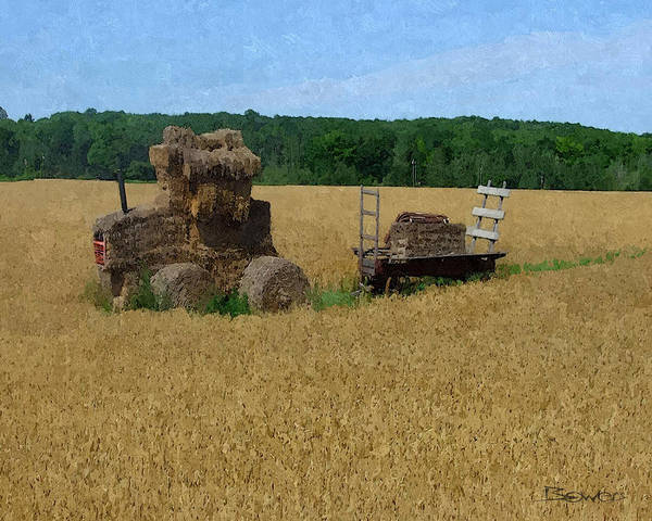 Hay Art Print featuring the photograph What The Hay by Mike Bowers