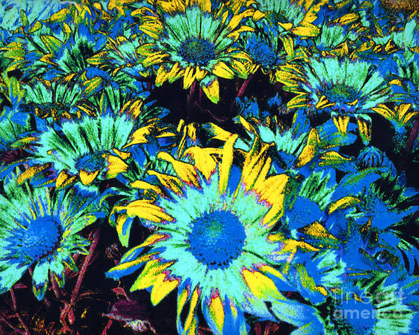 Flowers Art Print featuring the photograph Peele Mums - Floral Digital Computer Art by Merton Allen