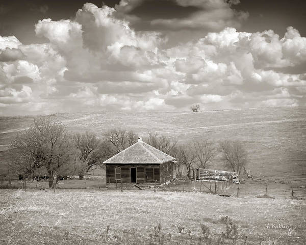 Abandoned House Art Print featuring the photograph Abandoned Farmhouse by Andrea Kelley