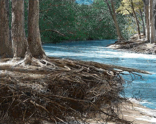 Landscape Art Print featuring the photograph At Water's Edge by Jan Roser