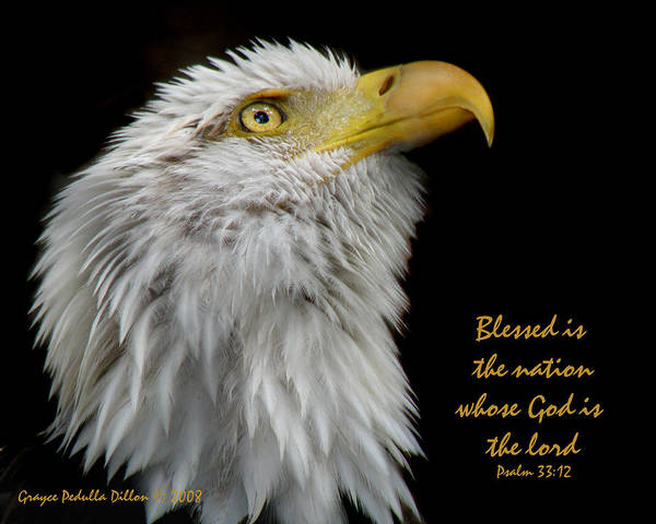 Eagle Art Print featuring the photograph Blessed Is The Nation by Grace Dillon