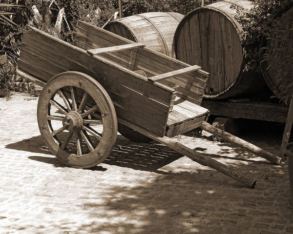 Cart Art Print featuring the photograph Cart And Wine Barrels In Italy by Greg Matchick