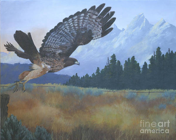 Hawk Art Print featuring the painting Dinner Time by Diana Mahnke