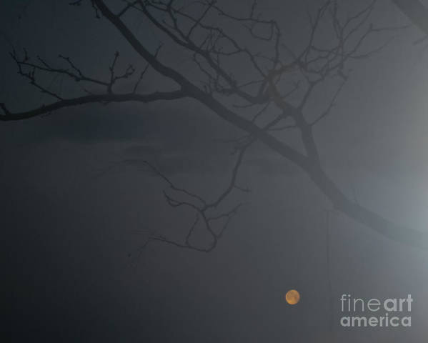 Fog Art Print featuring the photograph Foggy Morn In Fort Collins by Harry Strharsky
