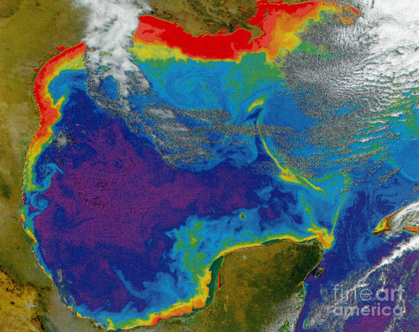 Aerial View Art Print featuring the photograph Gulf Of Mexico Dead Zone by Science Source