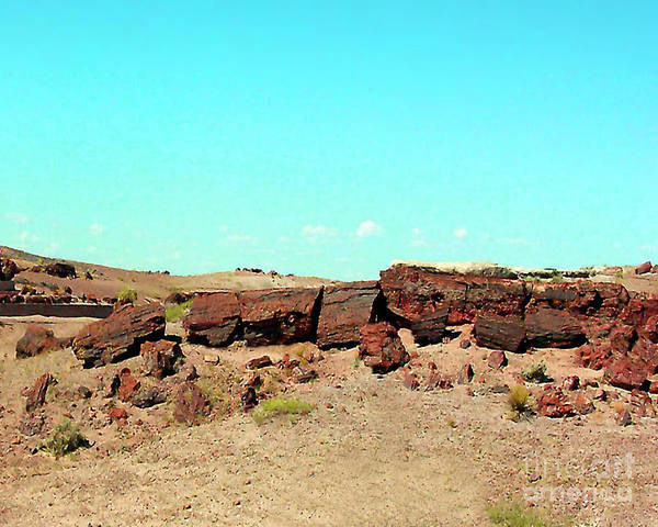 Arizona Art Print featuring the photograph In The Petrified Forest In Arizona by Merton Allen